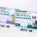 猫にブロードラインを使ってみたら レボリューションとの違いは?