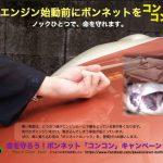 冬は車のエンジンに猫が巻き込まれる事故に注意
