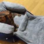 猫のベッド、洗えるふわもこのヤツ♪
