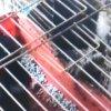 埼玉県上尾市の猫監禁多頭飼い!猫43匹・鶏70羽の劣悪環境の実態